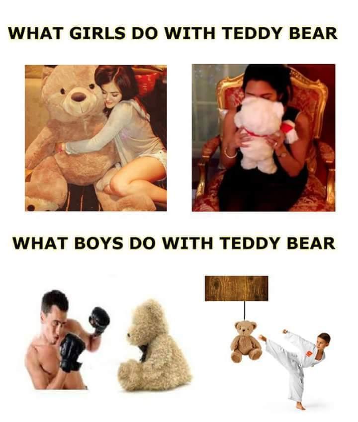 Teddy Boys V/s Girls - meme