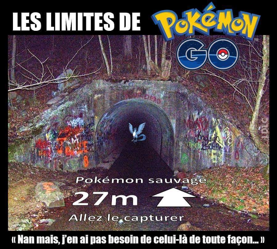 Ou ira t'es limites sur Pokemon Go ! - meme