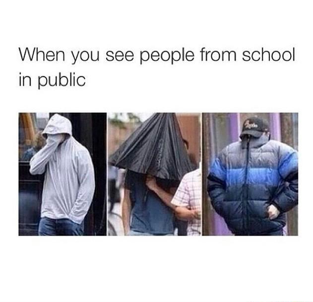 Seeing people from school in public - meme