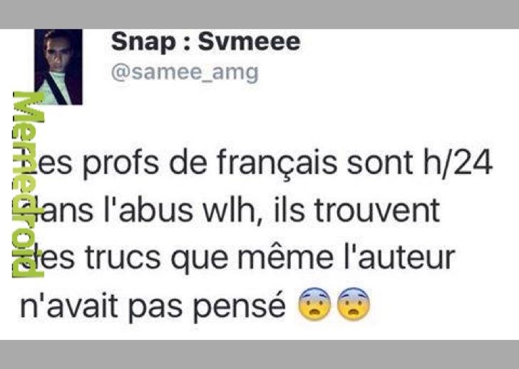 les profs de francais - meme