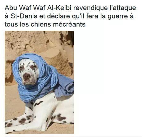 Pour ceux qui ne sont pas au courant, un chien du RAID est mort lors d'un assaut - meme