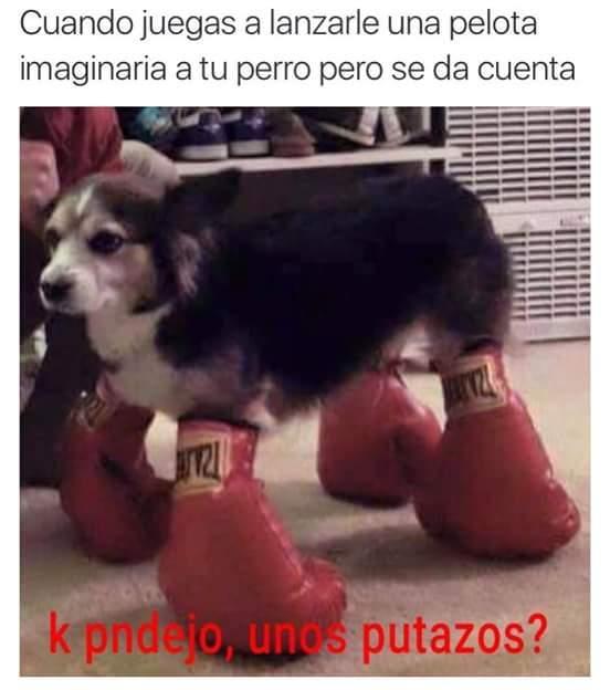 Putazos - meme