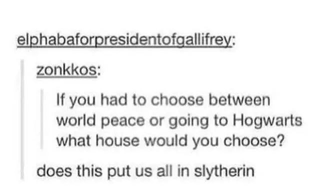 Slytherin isn't bad. We're just misunderstood... - meme