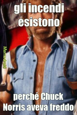 Chuck domina - meme