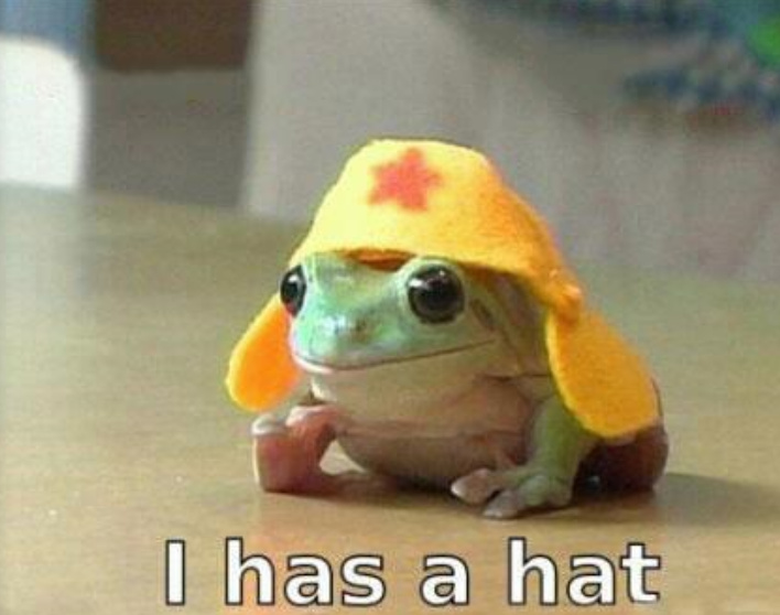 Yup,he has a hat - meme