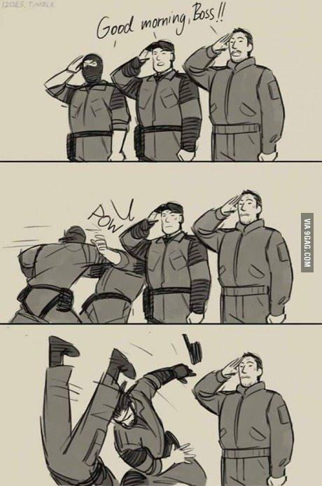 Metal Gear Solid V - meme