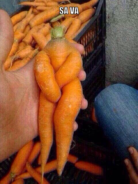 La carrote - meme