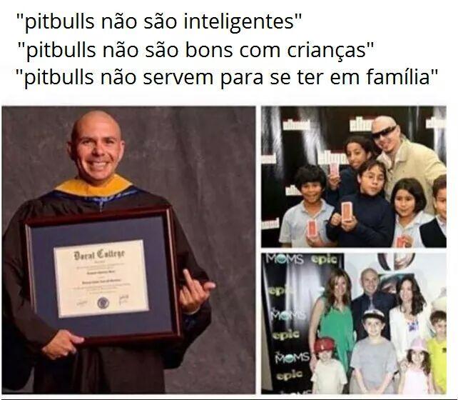 Tolhinhos - meme