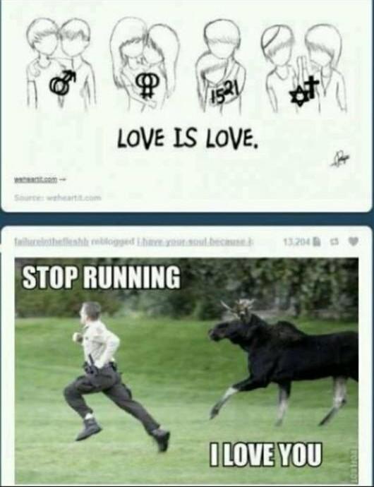 « Stop running, I love you ! » xD - meme