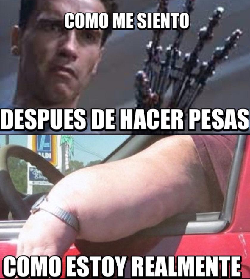 Mis musculos - meme