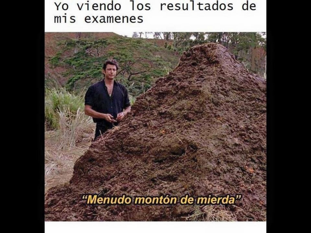 MENUDO MONTÓN DE MI#%^$ - meme