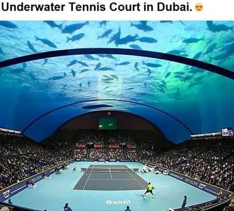 Dubai y sus maravillas excéntricas - meme
