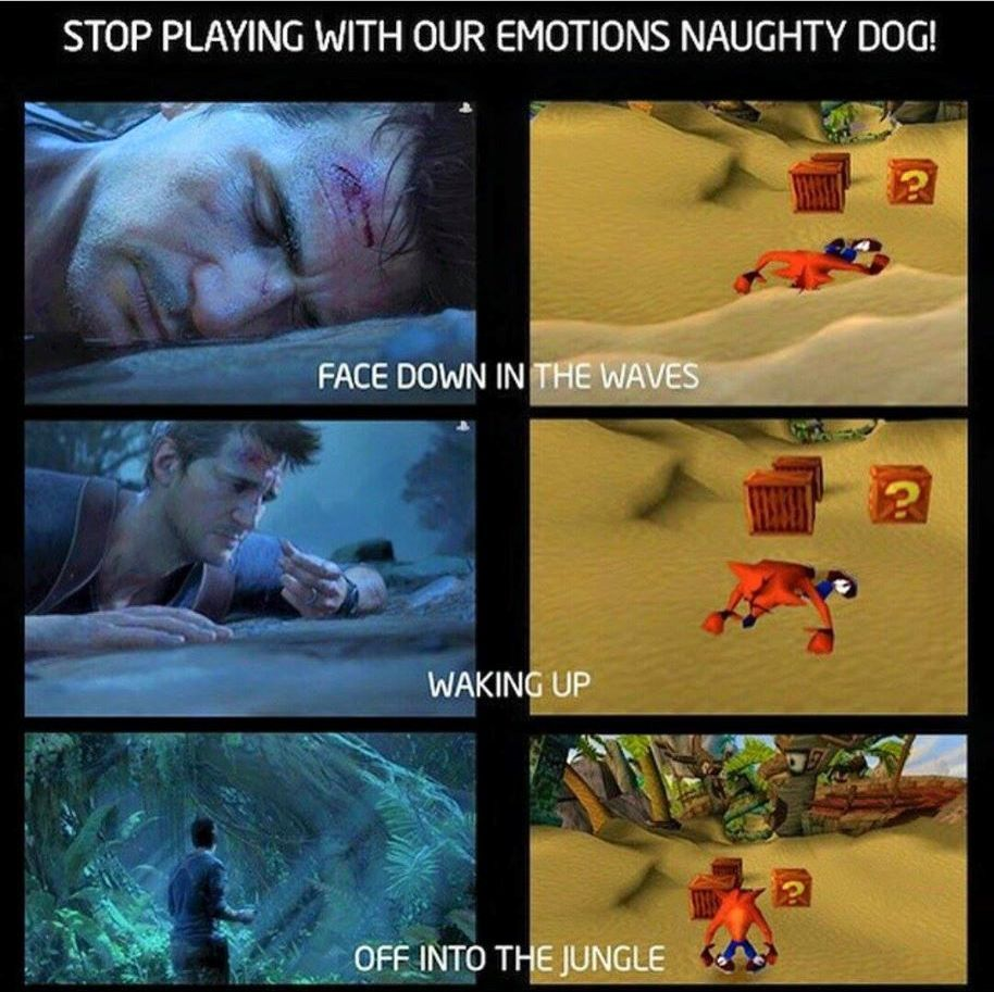 Naughty dog, why you do this - meme