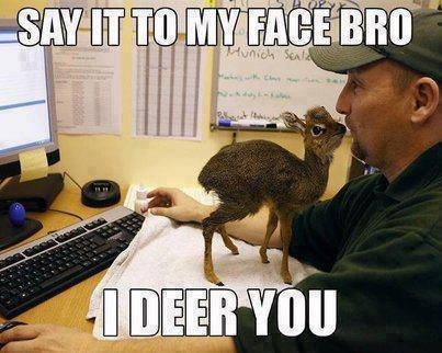 Oh, deery me - meme
