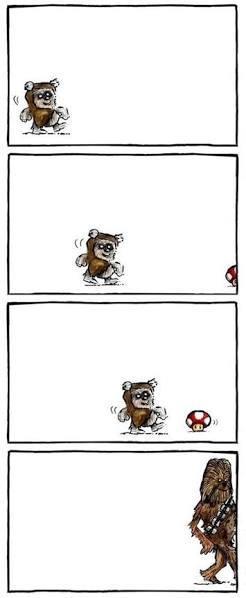 Evolução - meme