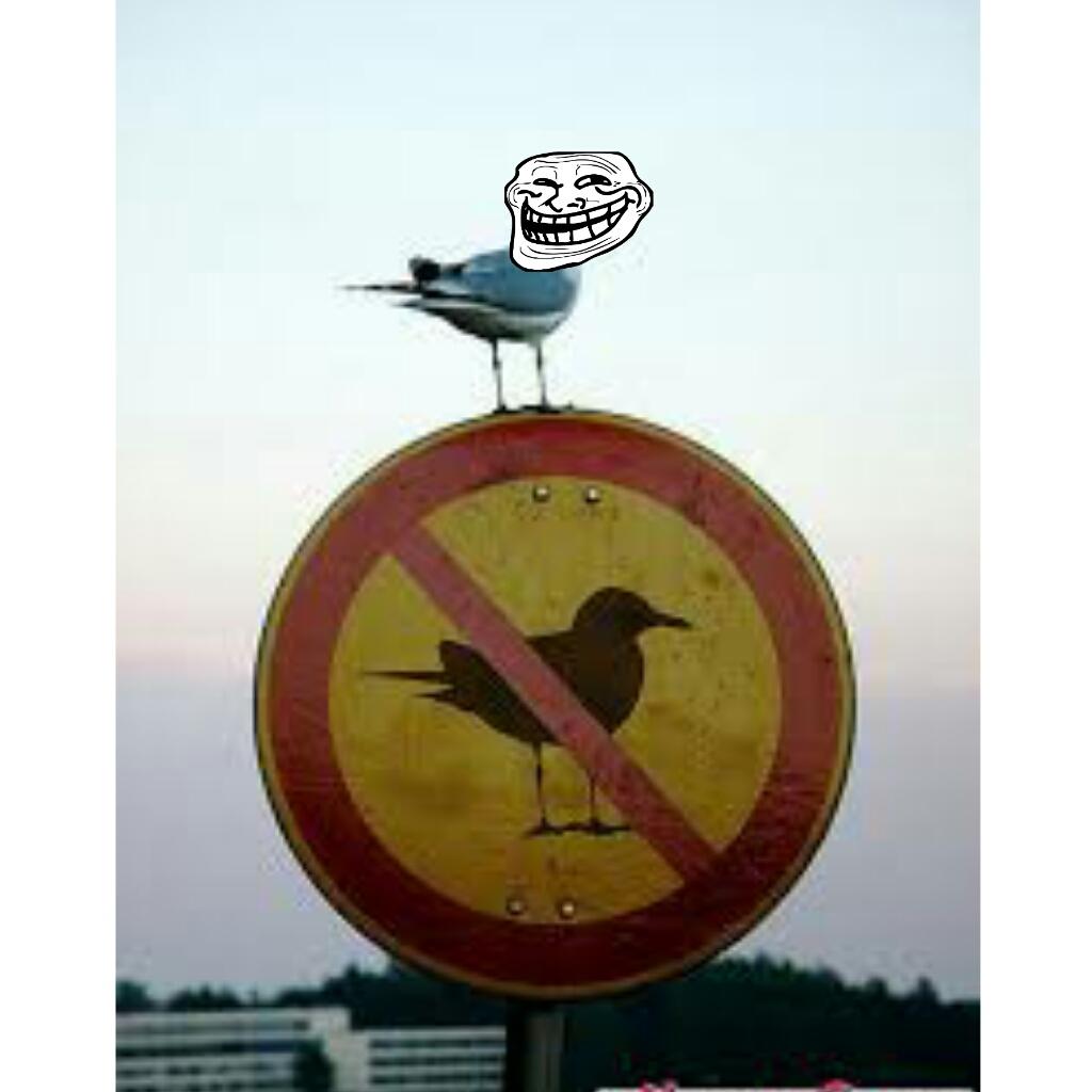 That thug !!!!! ;-) - meme
