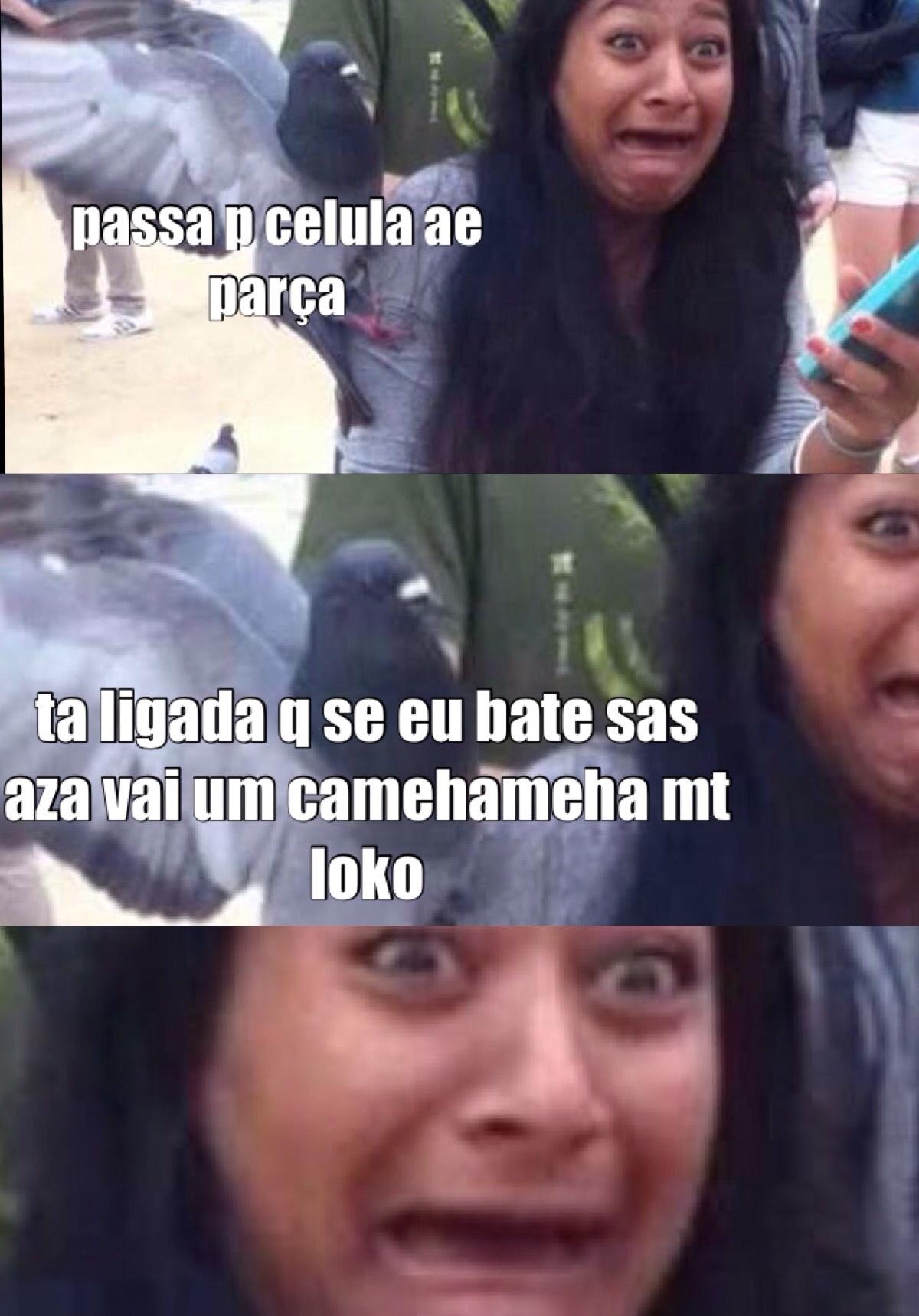 pombo ladrao - meme