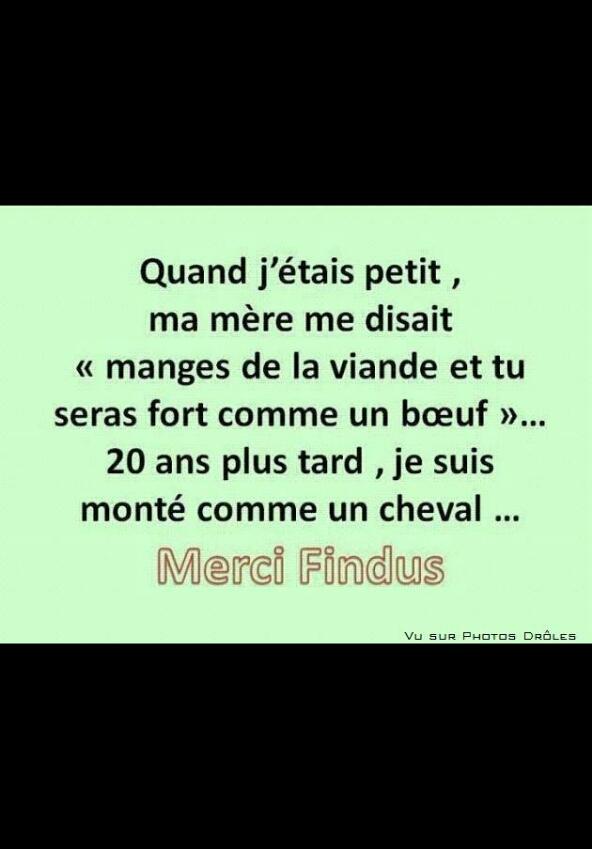 Findus - meme