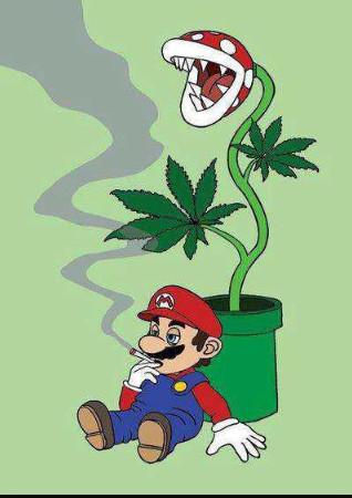 Mario shit - meme