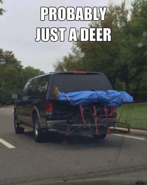 Yeah... A deer. - meme