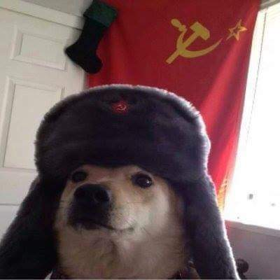 Le chien communiste - meme