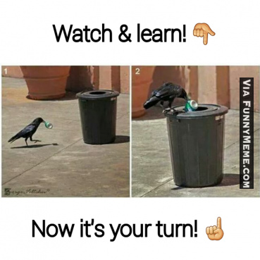 watch and learn - meme