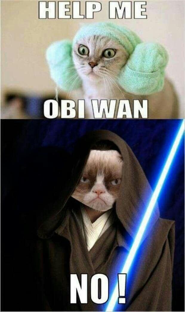 Grumpy cat kenobi - meme
