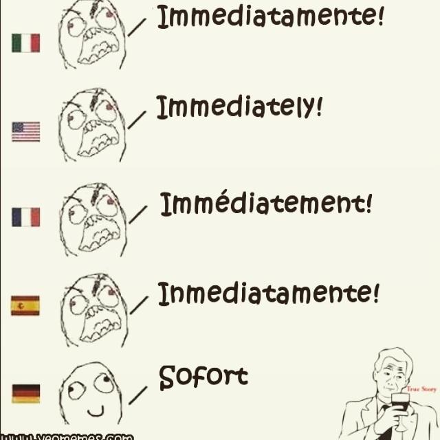 Al parecer el alemán no era del todo tipo FRAKINHUVANTROUSEN - meme
