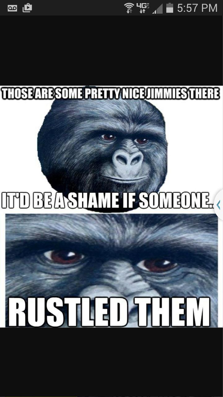 Rise my Children - meme