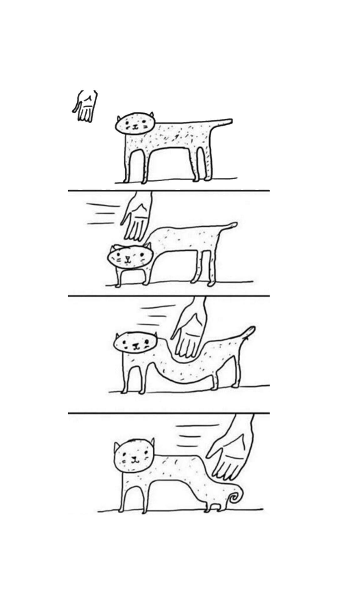 les chats ... - meme