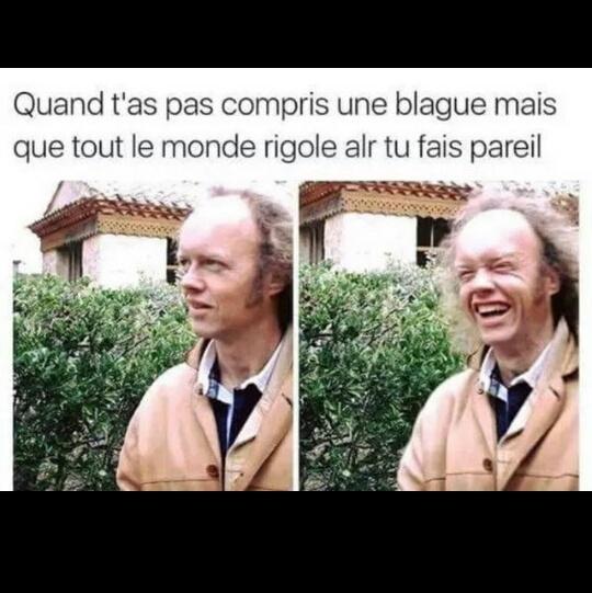 oui - meme