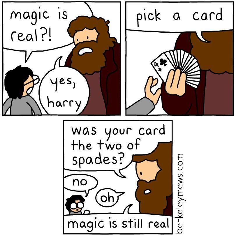 Hagrid is hairy - meme