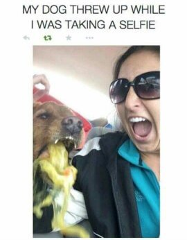Best selfie EVER - meme