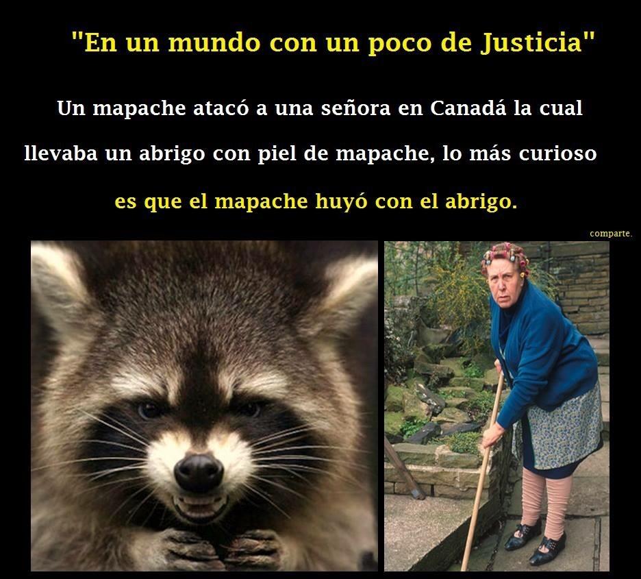 justicia - meme