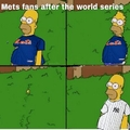 Mets fans currently lol