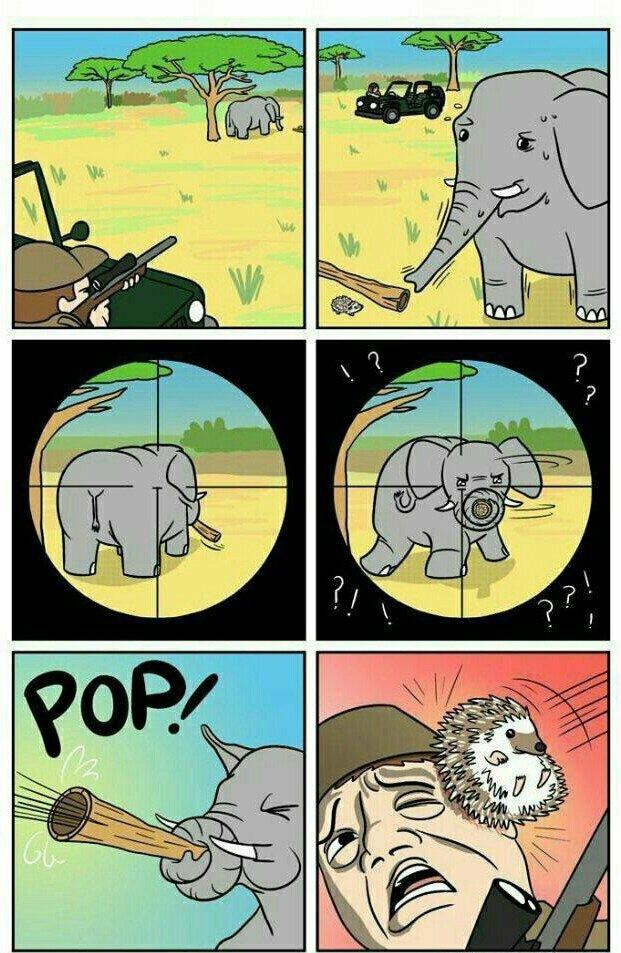 when elephants attack - meme