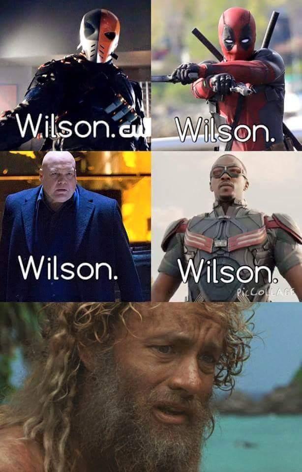 Wilson - meme