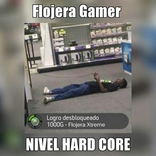 Flojera - meme