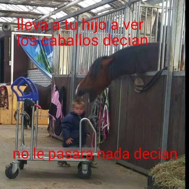 56411885a4115 top memes de tag pr memes en español ) memedroid