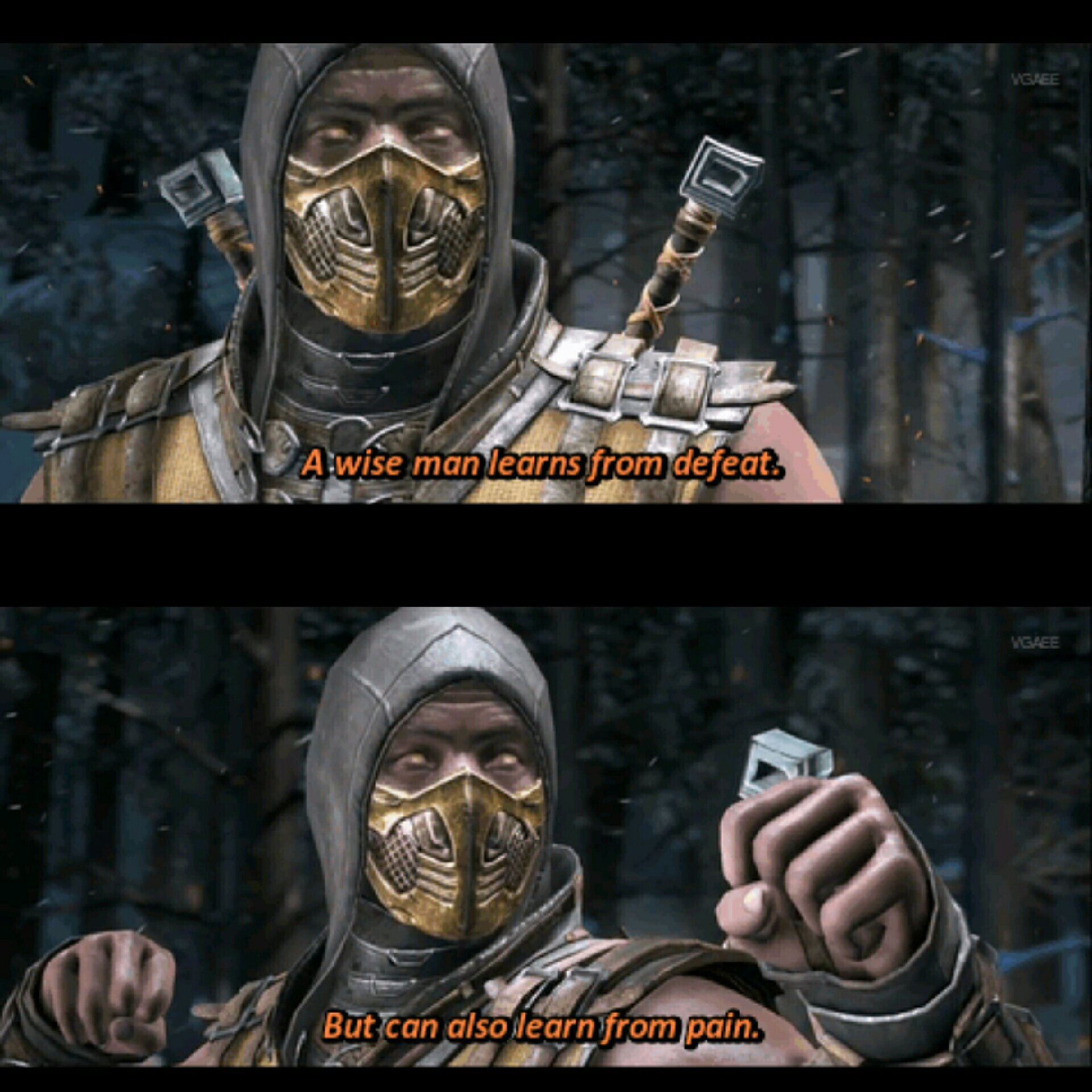 Wise words by Scorpion - meme
