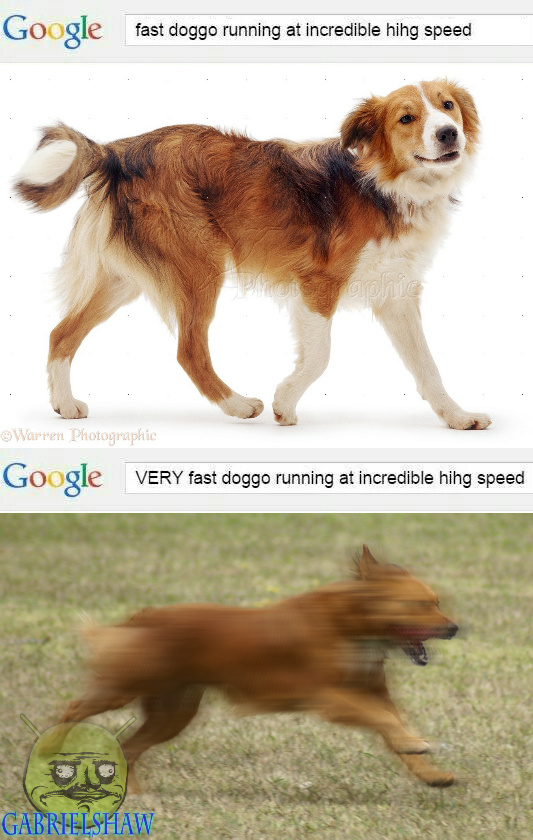 56c647e292005 very fast doggo running at incredible hihg speed meme by
