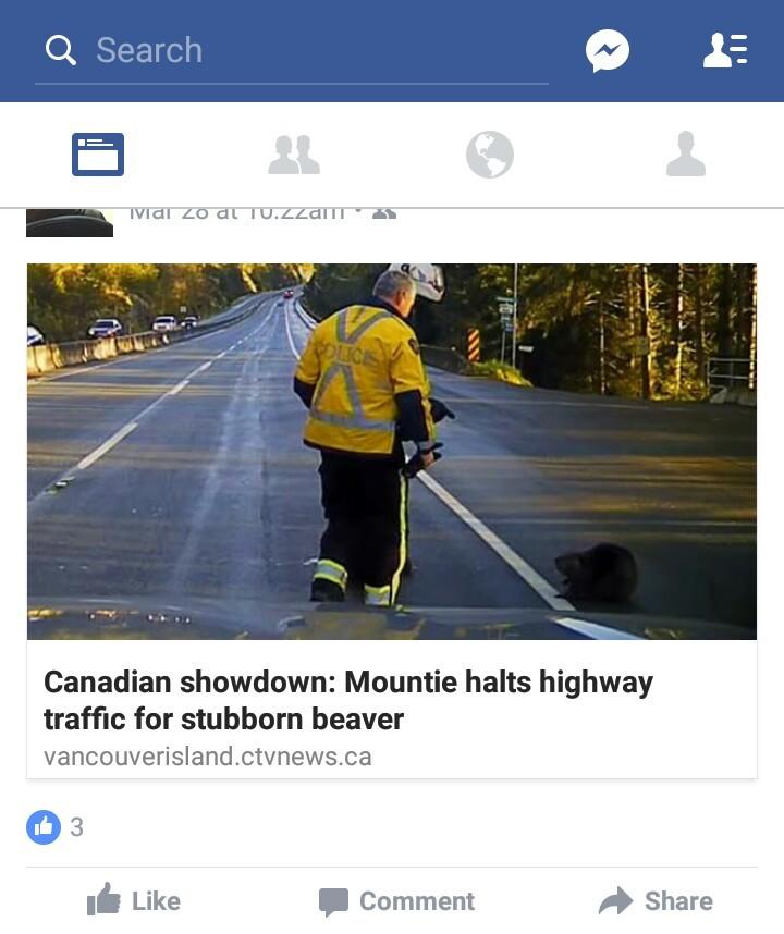 I love this island, oh Canada - meme