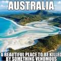 Aussie?