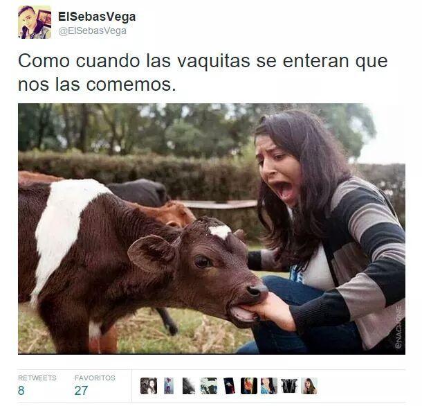 La vaca se comió el título - meme