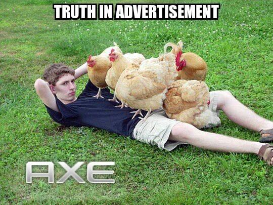 Get all tha chicks - meme