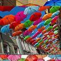 umbrella street (Portugal)