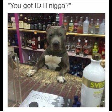 Got ID? - meme