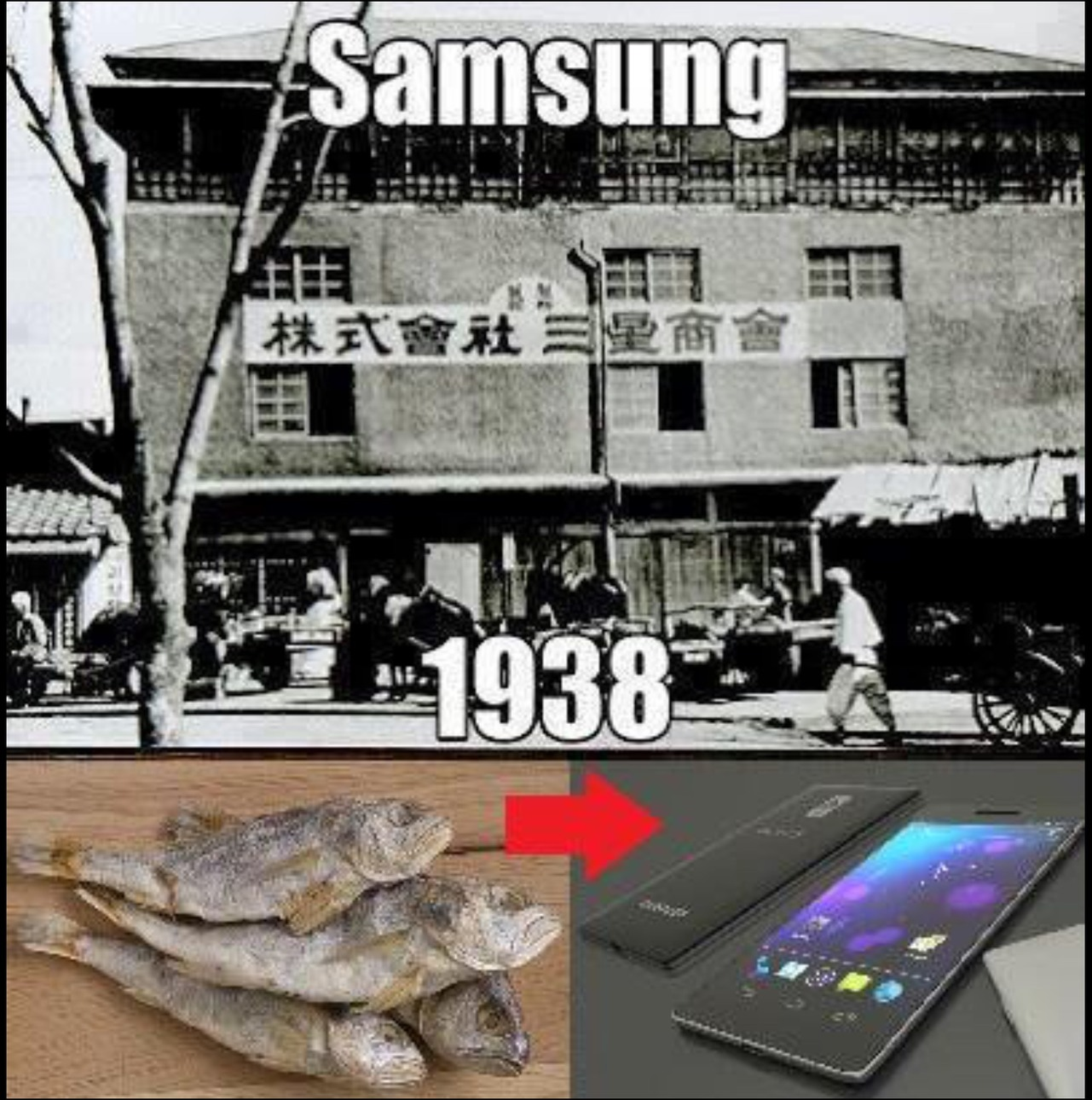 Samsung's first product was dried fish - meme