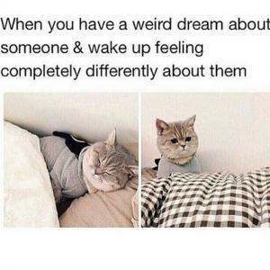 This was me when I was going through puberty and I'd dream about the boys in my class - meme