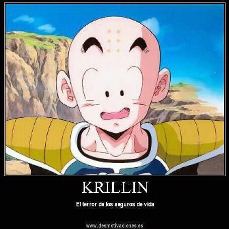 Krillin  \*~*/ - meme